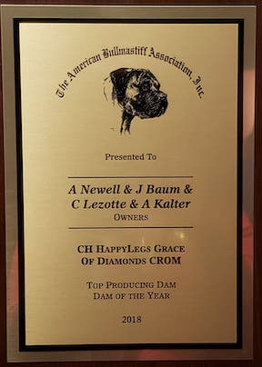 Gracie Top Producing Dam of the Year!