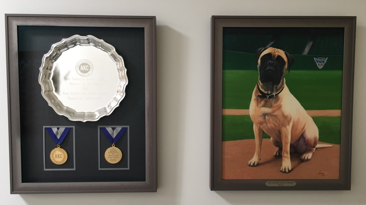 AKC Breeder of the Year